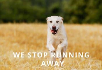 running