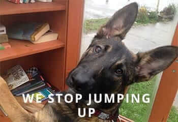 Jumping-Up