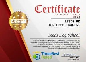 certificate2021