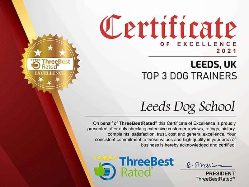 certificate2021-small
